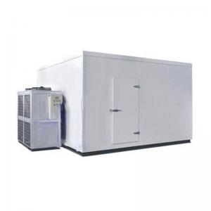 China Customized Size Blast Chiller Freezer Warehouse Cold Container Copeland Compressor on sale