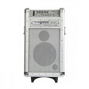 China Système de haut-parleurs en bois professionnel de PA de batterie avec le lecteur DVD/Fm et Usb on sale