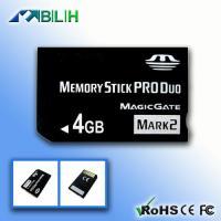 4GB Micro SD Card (BLH-TFE003)