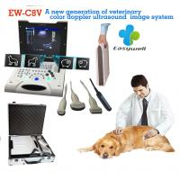 Laptop Color Doppler ultrasound system EW-C8V with convex probe for veterinary with specialty obstetric measurement soft