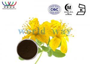 China Herbal Medicine St John'S Wort Extract Powder 100 % Natrual Anti Depression on sale
