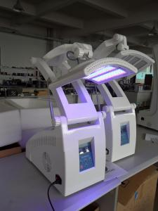 China PDT LED skin rejuvenation equipment US789 supplier