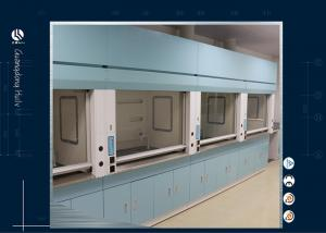 China Laboratory Work Area Benchtop Fume Hood Air Clean Biological Safety Cabinet on sale