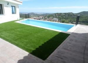 China Free Maintenance Commercial Artificial Grass Natural Appearance Long Life Evergreen on sale