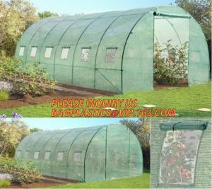 China Polycarbonate Plastic Sheet Agricultural Mini Garden Green House Walk In Dome on sale