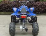 China Electric Start Racing 4 Wheelers Youth 110cc Atv With Front Double A - Arm wholesale