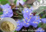 Plant Extract Cyanotis Arachnoidea Ecdysone Powder Cyanotis Arachnoidea Ecdysone