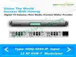 12 système sans fil terrestre de modulateur du modulateur d'IP Digital TV de carte de fente de fréquence/DVB T COFDM