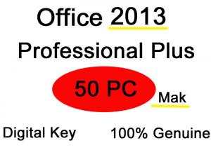 China 32 64 Bit Ms Office 2013 Professional Plus Key Software 50PC Mak Pro on sale