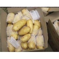 Chinese Yellow Organic Potatoes Contains Niacin , Magnesium , Phosphorus