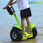Imperméabilisez 2 l'approbation extérieure de la CE de taille du scooter électrique 110mm de roue