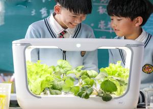 China Indoor Plants Vertical Hydroponic Sprout Growing Systems on sale