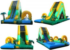 China Environmental Outdoor Inflatable Water Slides With Durable PVC Tarpaulin on sale