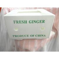 fresh ginger packing turnover transportation box