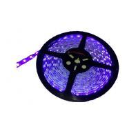 High luminous beautiful SMD5050 Flexible LED Strip Lights 60led/m 11-13LM