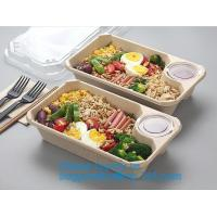 Biodegradable Microwave Bamboo Sugarcane Bagasse Food Container,Eco friendly disposable sugarcane food container with li