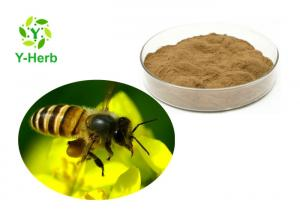 China Natural Bee Propolis Powder Flavones Food Grade Ethyl Alcohol Colla Apis Extraction on sale