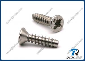 China 304/316 Stainless Steel Pozi Countersunk Head Tapping Screws for Plastics on sale