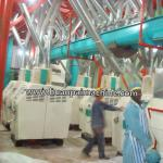 wheat mill equipment / wheat flour milling machinery for cake