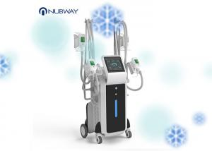 China Cryolipolysis Fat Freeze Slimming Machine Cool Shaping Device 4 Handles on sale