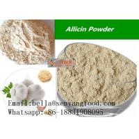 China European standard Grade A feed additive dehydrated garlic powder export on sale