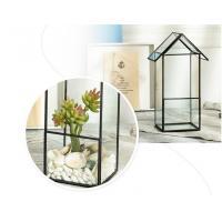 Handmade Geometric Irregular Micro Landscape / Flower Craft Small Glass Planters