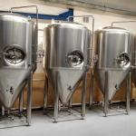 500L double beer fermenter beer fermentation tank use for brewery brewhouse