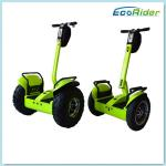 China Green Safety Balance Electric Scooter Self Balance Hoverboard High Speed wholesale