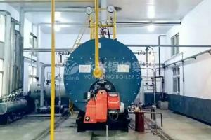 China Horizontal Gas Fired Hot Water Boiler Condensing Boiler Hot Water Tank on sale