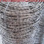 barbed wire with low price/electro barbed wire/High Quality Galvanized Concertina Barbed Wire Price Per Roll