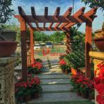 Customized Outdoor Garden Pergola Kits Environmental Friendly No Painting No Painting