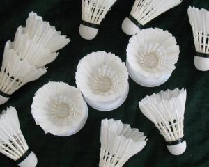 China Volantes de la pluma del bádminton del grado de DAYI-gongyu on sale