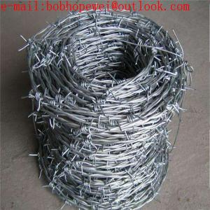 China security barbed wire fencing / galvanized barbed wire/double twist barbed wire/ 2 strand 4 point barbed wire mesh on sale