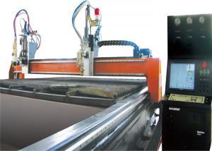 China mini Gantry Cutting Machine professional with flame , plasma torch on sale