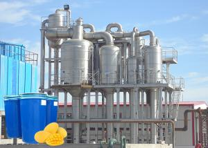 China High Output Concentrated Fresh Mango Processing Line on sale