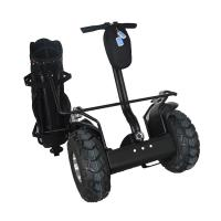 High quality awesome electric mobility scooter,modern golf trolley carts