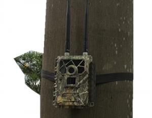 China LTE Wireless Remote Control 4G Hunting Camera Game Camera That Connects To Phone  on sale