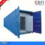 Refrigeración 20 pies de los 40ft de cámara fría del envase/contenedores del congelador para el almacenamiento de la carne de pescados
