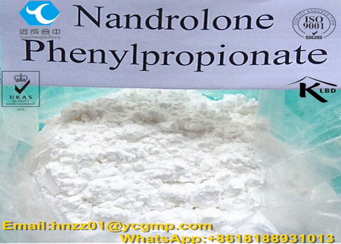 nandrolone phenyl propionate cutting cycle