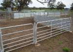 Customized size farm fence panels , cattle yard gates hot dip galvanized surface treatment