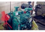 Cummins Water Cooled Diesel Engine , 4B3.9- G1 (24kw) For Generator Set
