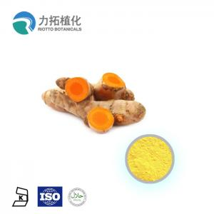 China ISO factory supply of China organic nutritious health benefits curcumin extract 95% on sale