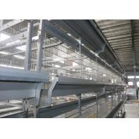 Large Scale Modern Stackable Chicken Cages / Open House Battery Cage System