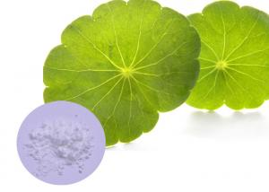 China Gotu Kola Natural Cosmetic Ingredients 60 - 90% Leaf Extraction For Skin Care on sale