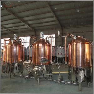China 300L commercial brewery equipment for sale for pub brewing on sale