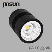 High quality AlU  Ip65 30W competitive  and waterproof surface mounted LED downlight with CITIZEN/BRIDGELUX chip 4000lm