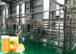 Complete apple & pear juice production line processing plant full automatic machinery