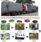 Vacuum cooling machine for fresh vegetables, fruits, and flowers rapid cooling after harvet