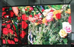 China Brightness Adjustment  Outdoor SMD LED Display , Pitch 10mm Outdoor Led Sign supplier