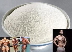China Men Sex Enhance Natural Yohimbe Bark Extract 8%~98% Yohimbine HCl Cas No 65-19-0 on sale
